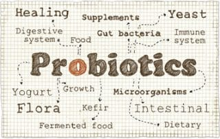 how probiotics affect gut health and bacteria