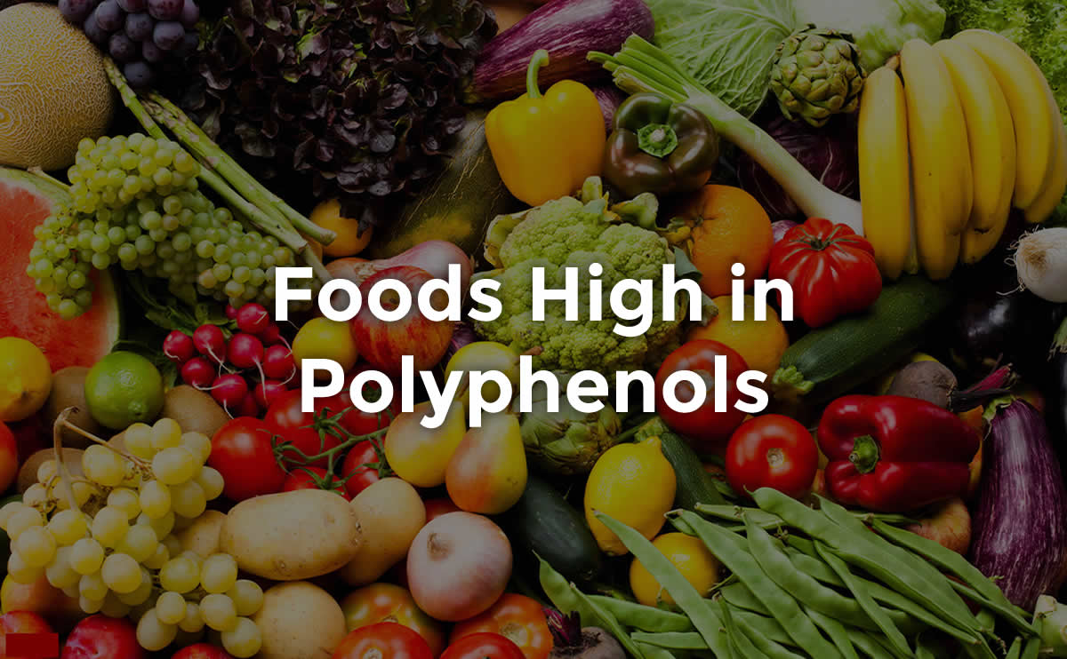polyphenols rich foods options